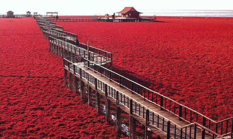 red-seabeach-china